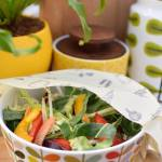 Reducing plastic waste : Reusable food storage solutions