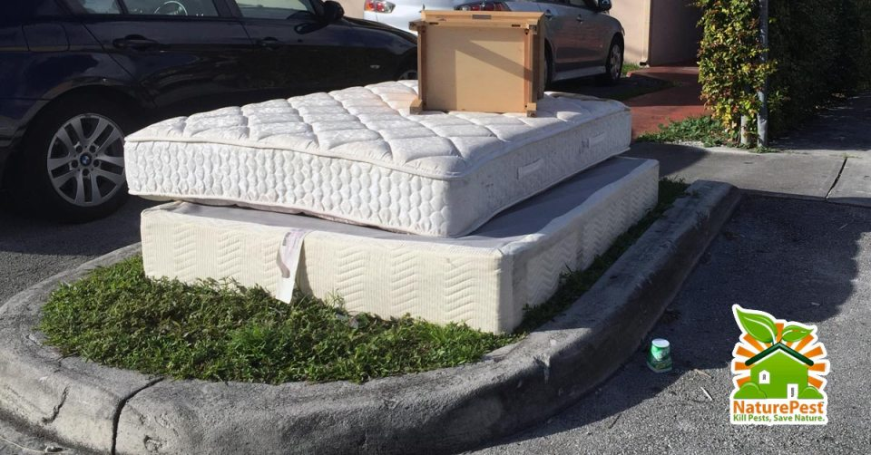 You buy pick up or accept a used mattress please not that picking up