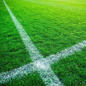 Fotbollsplan gödning fotbollsutrustning gräsfrö
