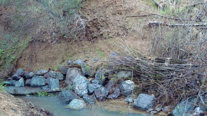 Stream Bank Stabilization