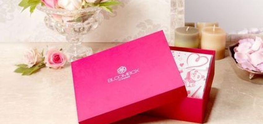 luxurybox1