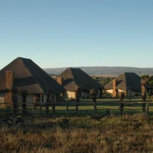 Some of the accommodations in South Africa