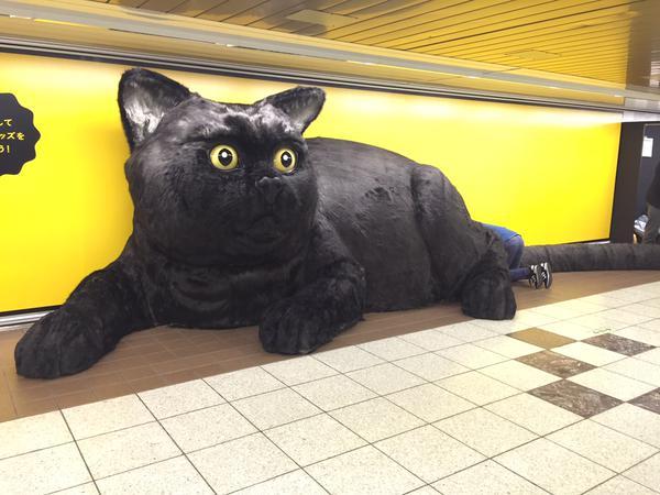 【猫ネタ】全国に巨大黒猫が!?東京・新宿に突如あらわれた6Mの巨大な黒猫とは・・・!?