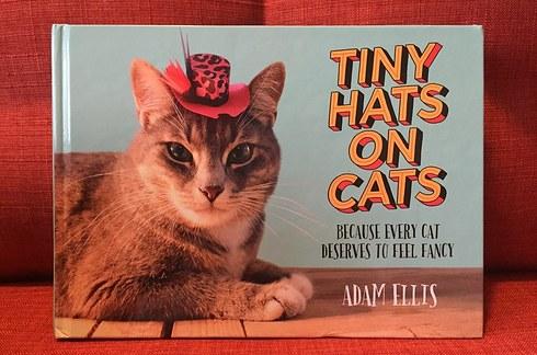 【猫ネタ】紙で猫の帽子を!?クオリティが高すぎる猫帽子の作り方とは・・・!? -TINY HATS ON CATS-