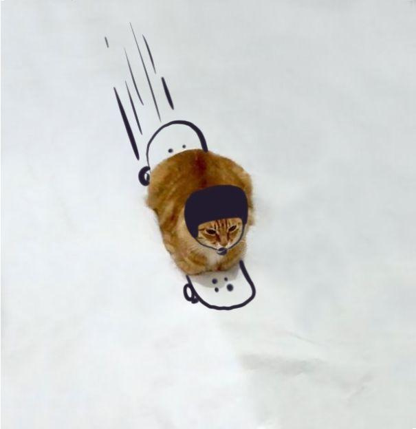 【猫ネタ】猫でマンガ大喜利!?猫の写真に落書きして大喜利すると・・・!?