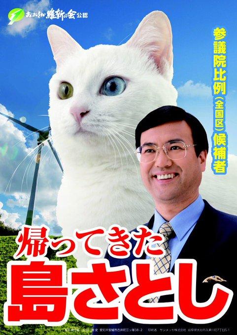 【猫ネタ】参院選で猫が候補者!?猫を前面に出して選挙活動をしていた「島さとし」氏とは・・・!?