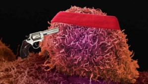 Amazing! Cancer could be treated by the body itself!!!