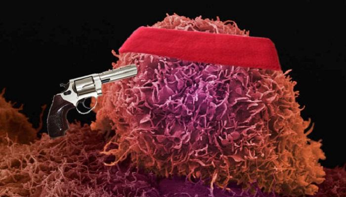 TIC10 to kill cancer-Netmarkers