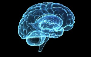OMG!These habits are damaging your brain.Stop them right away!