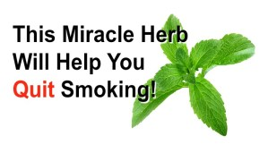 Quit smoking naturally with herb that destroys the urge for Nicotine!
