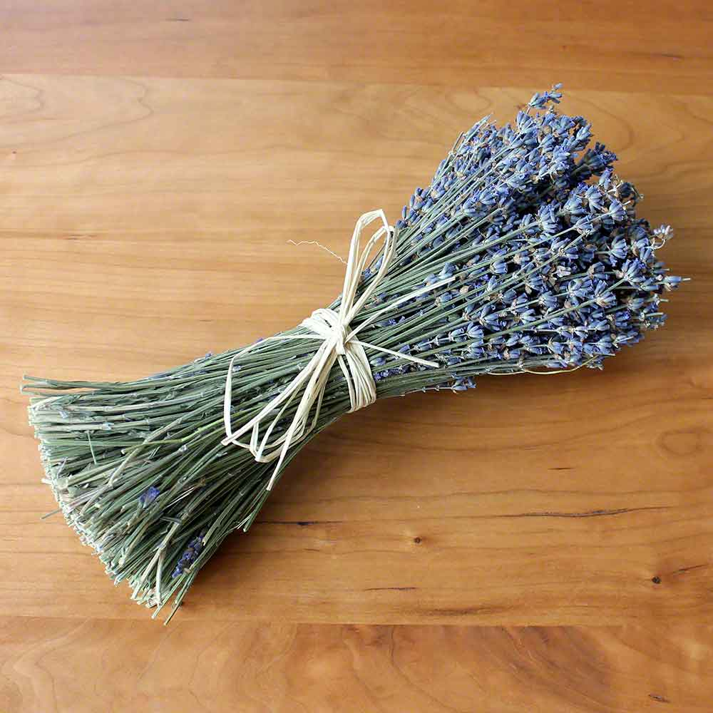 Cordial Mouse Dried Flowers English Dried Lavender How To Dry Lavender A Dehydrator Tea How To Dry Lavender houzz-03 How To Dry Lavender