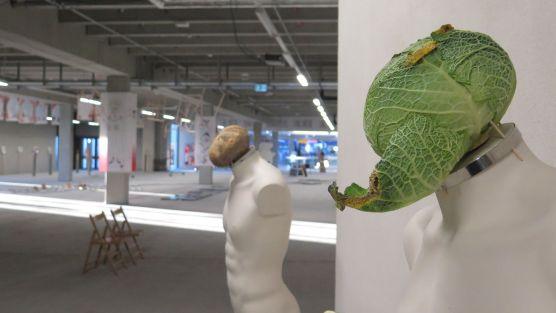 Kohlkopf und Rübenkopf - Titel der Werke: Mit Essen spielt man nicht.