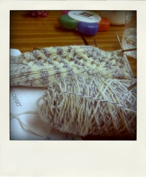Liab sock in progress