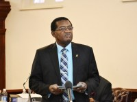 The Honourable Eugene Hamilton, Minister with responsibility for Environment
