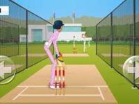 Cricket Notice