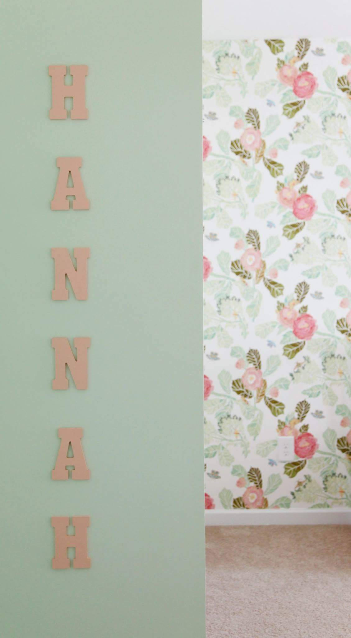 Majestic Hannah Coral Wall Letters Wall Decor Wooden Letters Personalization Hannahs Babyroom Nursery Ideas Girls Coral Baby Bedding Baby Girl Nursery Ideas Floral Nursery Inspiration Nursery Ideas houzz-02 Baby Girl Nursery Ideas
