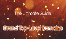 The Ultimate Guide to Brand Top-Level Domains
