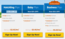 HostGator Mystery Savings Sale: Up to 65% Off Hosting