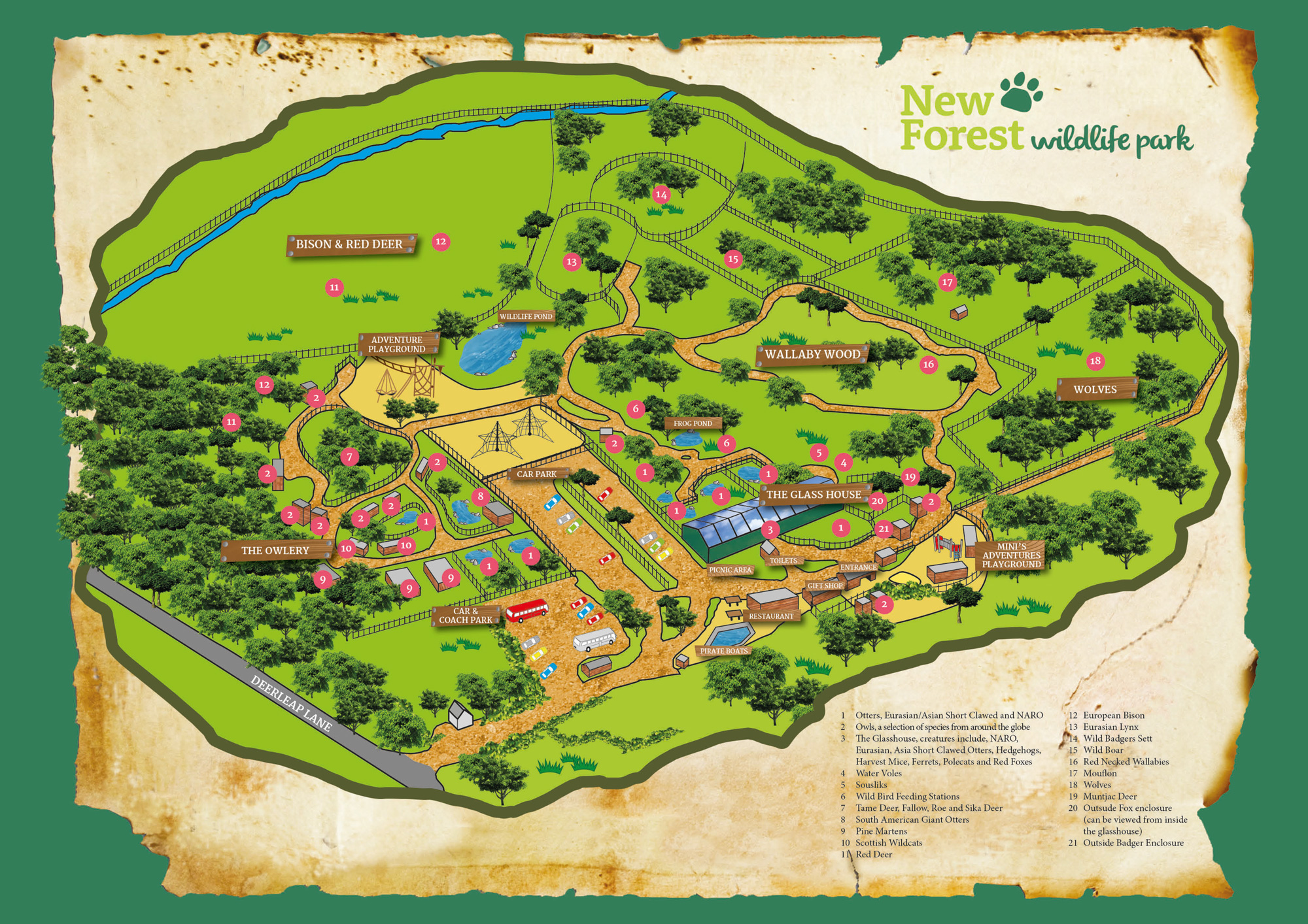 The Park Map   New Forest Wildlife Park New Forest Wildlife Park map