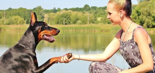 woman with her dog_New_Love_Times