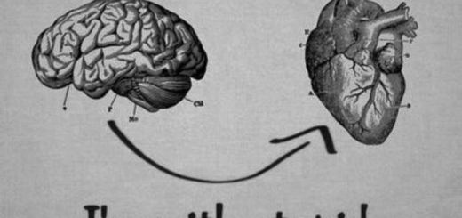 heart vs brain_New_Love_Times