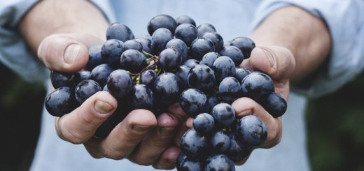 grape face mask recipes_New_Love_Times