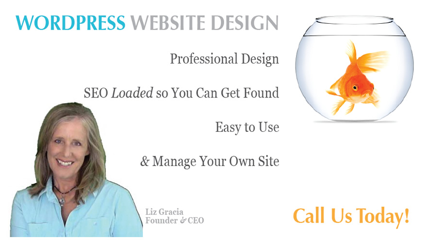 Slide1WordPress Website Design with SEO
