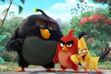 angry birds evidenza