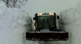 Carabinieri nella Tormenta. Numerose le azioni del Comando Provinciale in occasione dell'emergenza neve. In loro aiuto anche i Forestali.
