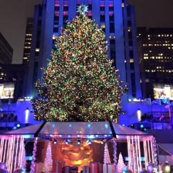 Natale in famiglia, da New York con amore!