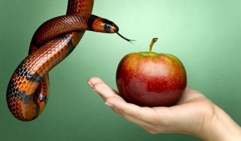 Serpiente y manzana