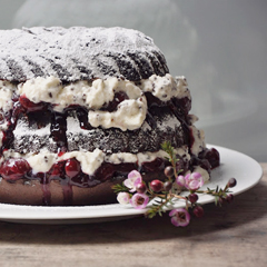 black_forest_feat