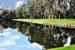 'Charleston Pond' by Ira Wolpert. 3rd place. Novice Digital.