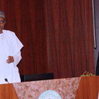 [BREAKING] Buhari launches new Nigerian passport with 10-year validity