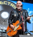 The Black Sorrows One Electric Day. Photo by Ros O'Gorman
