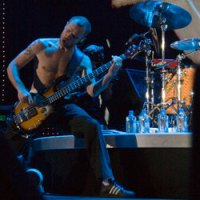 Flea of Red Hot Chili Peppers. Photo by Ros O'Gorman.