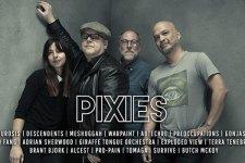 ban-nn33-pixies