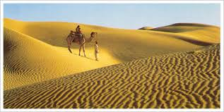Tourist places to visit near Jaisalmer - Sam Sand Dunes