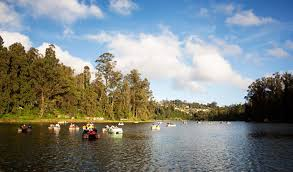 Tourist Places to visit in Ooty - Ooty Lake - Tourist Places to visit in Tamil Nadu