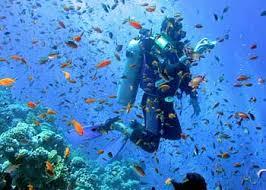 lakshadweep scuba diving sites, scuba diving in Lakshadweep
