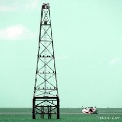 IMG_9579Tower