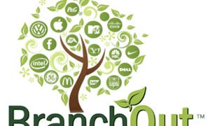 branchout review