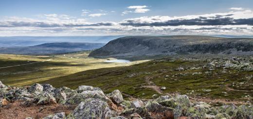 Karge und wunderschöne Landschaft am Nipfjället