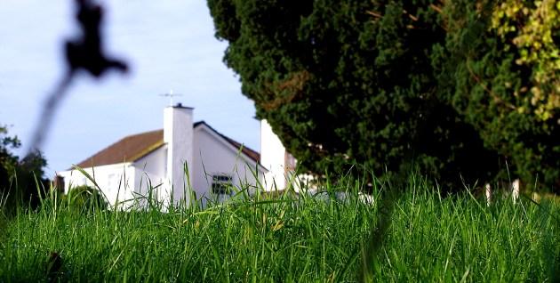 North Devon Green Web Design - free link