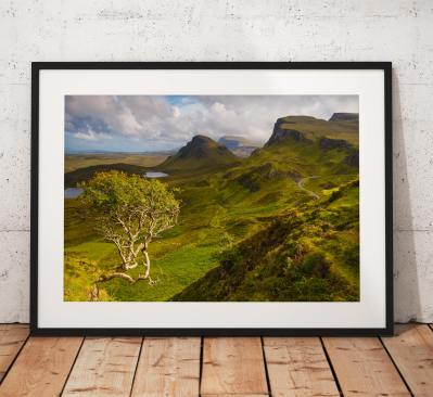 Scotland Landscape photography, Isle of Skye, Quiraing, Highlands, Scottish, Mountain, Tree, Nature, Countryside, Summer,  Wall Art