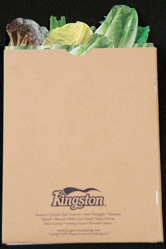 Kingston-rear