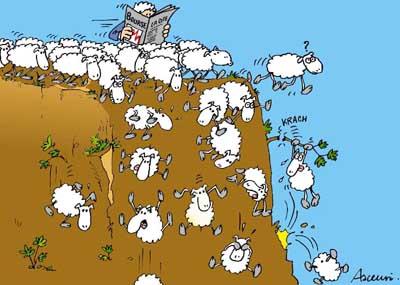 moutons qui se jettent dans un ravin