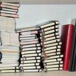 antsaint notebooks