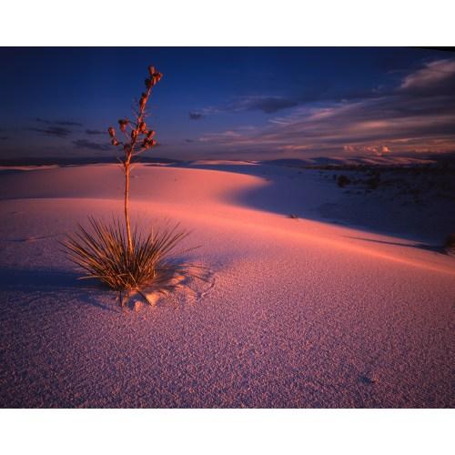 Medium Crop Of New Mexico Landscape