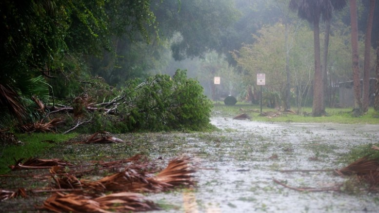ORMOND BEACH, FL - OCTOBER 7: Downed trees and branches cover a street in a residential community after Hurricane Matthew passes through on October 7, 2016 in Ormond Beach, Florida. Florida, Georgia, South Carolina and North Carolina have all declared a state of emergency in preparation for Hurricane Matthew.   Drew Angerer/Getty Images/AFP